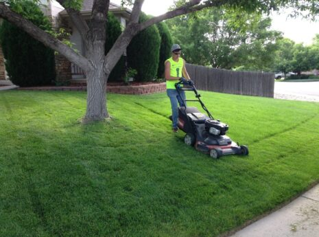 Lawn Service-Grand Prairie TX Professional Landscapers & Outdoor Living Designs-We offer Landscape Design, Outdoor Patios & Pergolas, Outdoor Living Spaces, Stonescapes, Residential & Commercial Landscaping, Irrigation Installation & Repairs, Drainage Systems, Landscape Lighting, Outdoor Living Spaces, Tree Service, Lawn Service, and more.